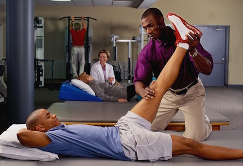physical therapy assistant salary - healthcare salary world, Human Body